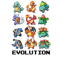 Pokemon Evolution Photographic Print