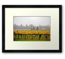 Winery Mist Framed Print