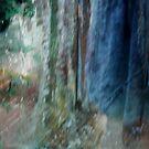of gloom by Christine McDonough