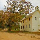 Autumn in Walnut Grove by Lisa G. Putman