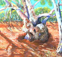 Silverton,River Gums by Virginia McGowan