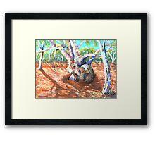 Silverton,River Gums Framed Print