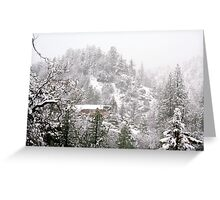 Big Bear Snow Greeting Card