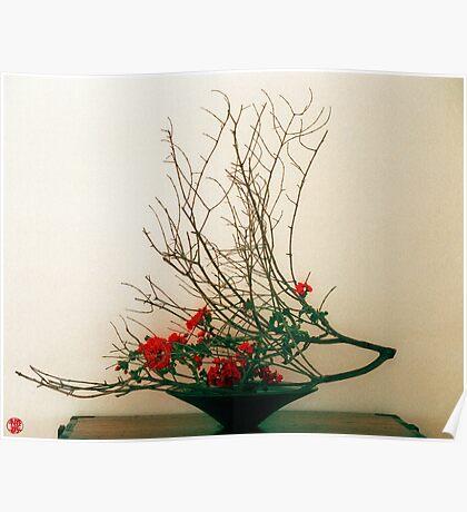 Ikebana-027 Poster