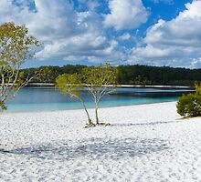 Lake McKenzie Panorama by Nicholas Coote