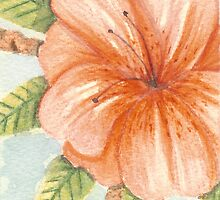 Coral Hibiscus Watercolor 418 by Melinda Tarascio Lidke