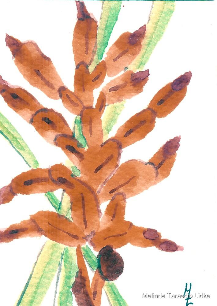 Red Lobster Claw Floral Watercolor 148 by Melinda Tarascio Lidke
