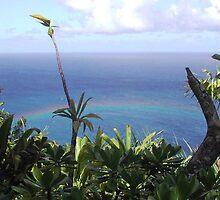 Wainema Canyon , Hawaii by ansosyns