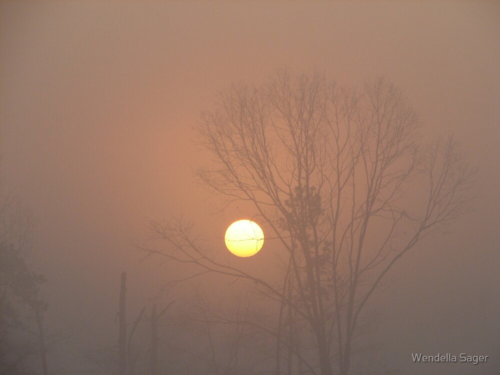 Foggy Sunrise 2 by Wendella Reeves