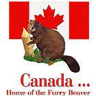 Furry Canada by SpiceTree
