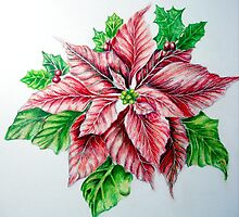 Red Poinsettia by Rebecca Wadle