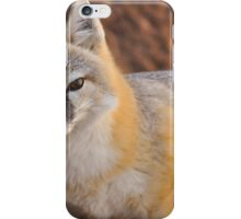 Swift Fox iPhone Case/Skin
