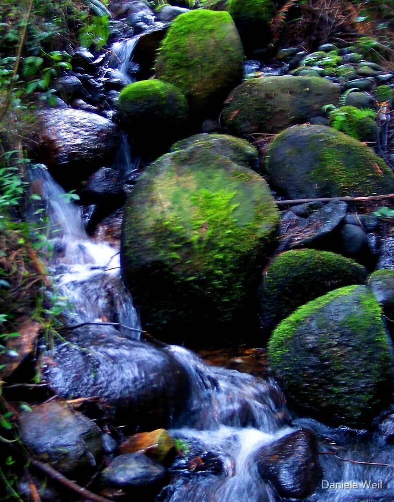 Spring... waterfall by Daniela Weil