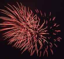 Fireworks-3 by silverfish