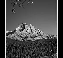 Alberta Rockies III - Mt. Ishbel by Kelly Sereda