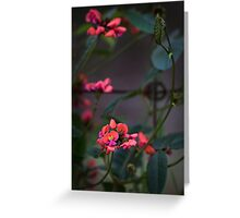 Standing out from the crowd Greeting Card