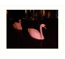 pink swan Art Print