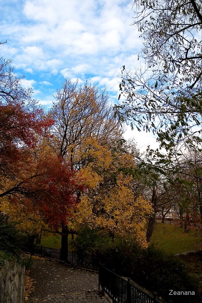 Autumn by Zeanana