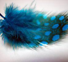 Feather Blue by Lorraine Creagh