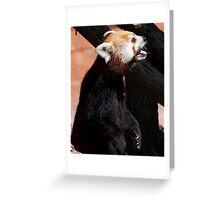 Stand Up Greeting Card