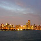 Chicago Illinois skyline in the evening by mbuban
