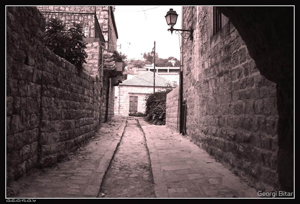 Serene passage by Georgi Bitar