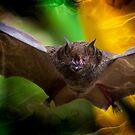 Pale Spear-Nosed Bat In The Amazon Jungle by Al Bourassa