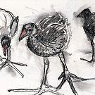 Chicks. by WoolleyWorld