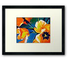 Bursting Colors  Framed Print