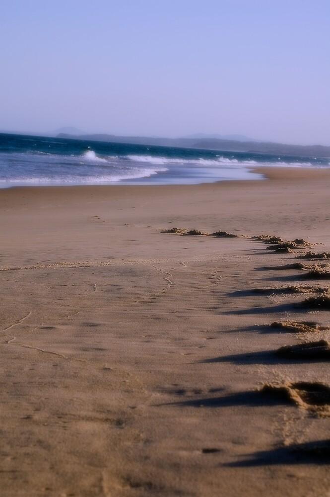Footprints by Sarah Moore