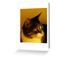 You want what? Greeting Card