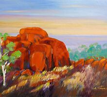 Devils Marbles Morning  by Virginia McGowan