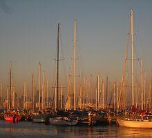 Masts by Arzu