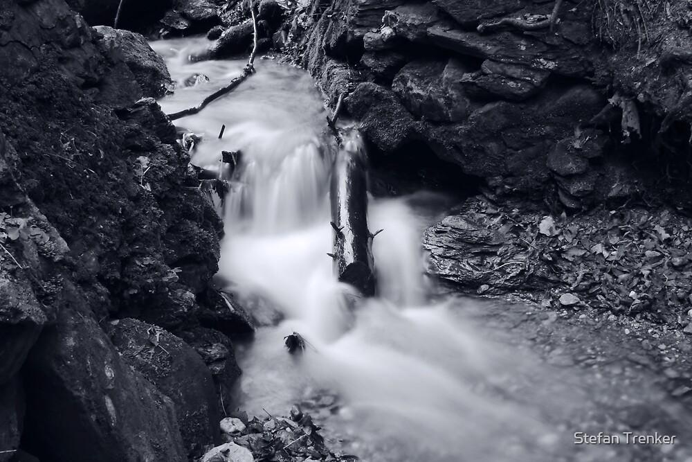 embedded in water by Stefan Trenker