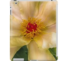 Clematis in HDR iPad Case/Skin