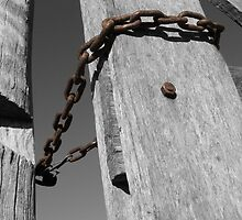 Fence and Chain by Greg Halliday