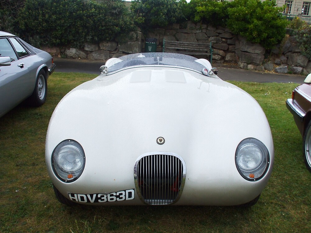 Very Nice Jag by Roger Poole