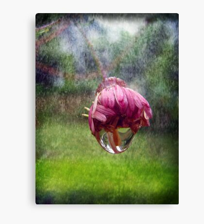 Rain Canvas Print