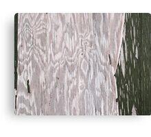 Grunge old Wood background Canvas Print