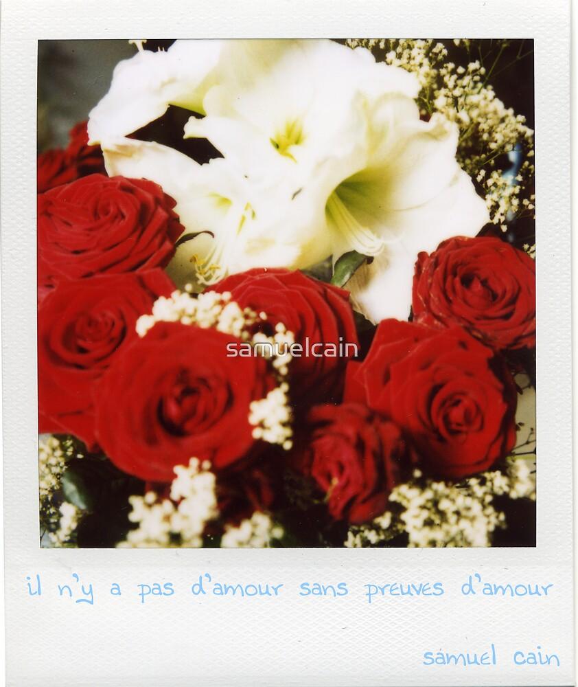 Preuves d'amour by samuelcain
