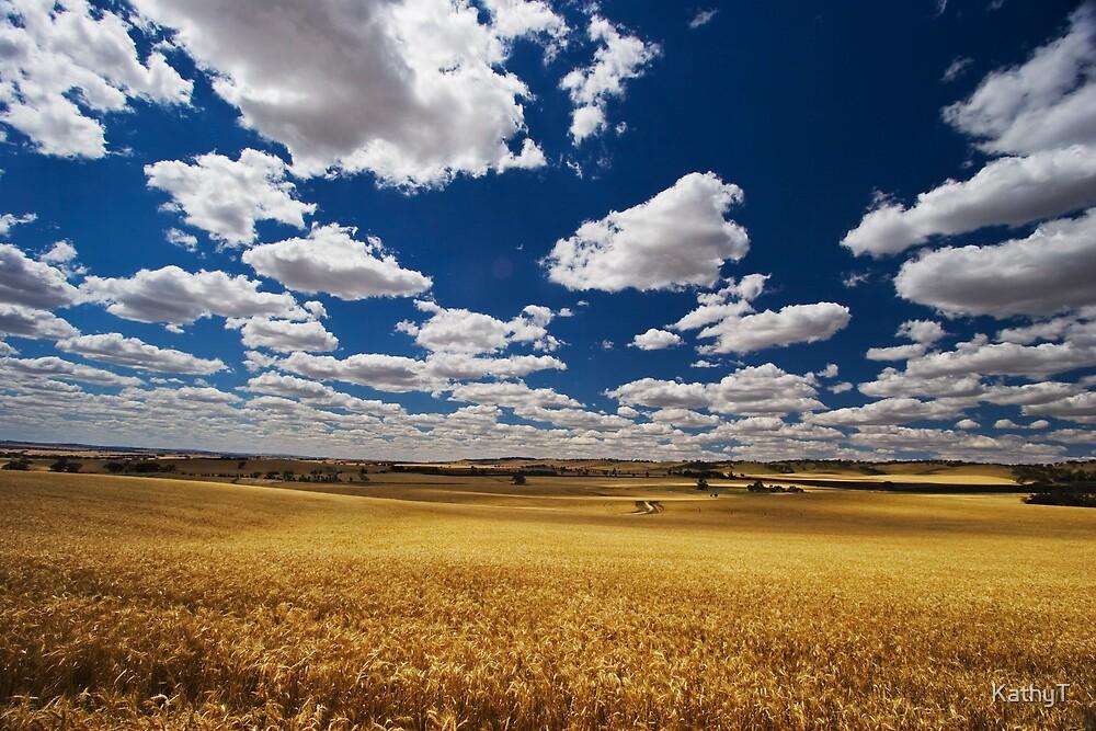 Golden Harvest by KathyT