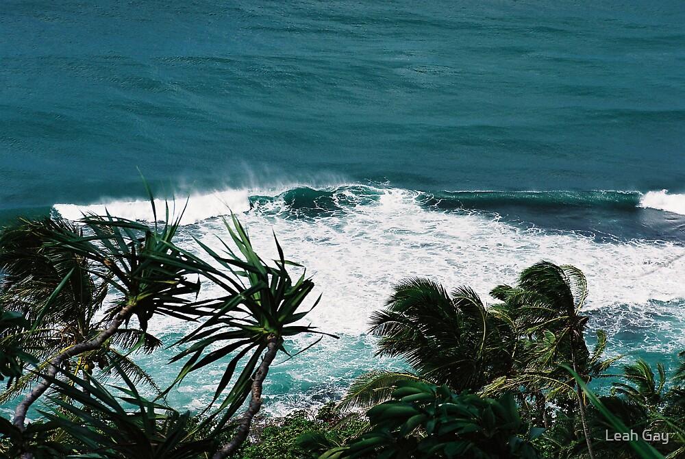 na'pali coastline, kauai, hawaii by Leah Gay