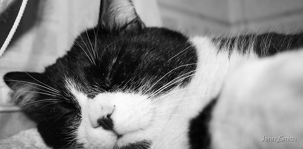 miles snoozin zzzz by JennySmith