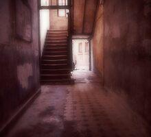 Quiet Journeys by Joanne Piechota