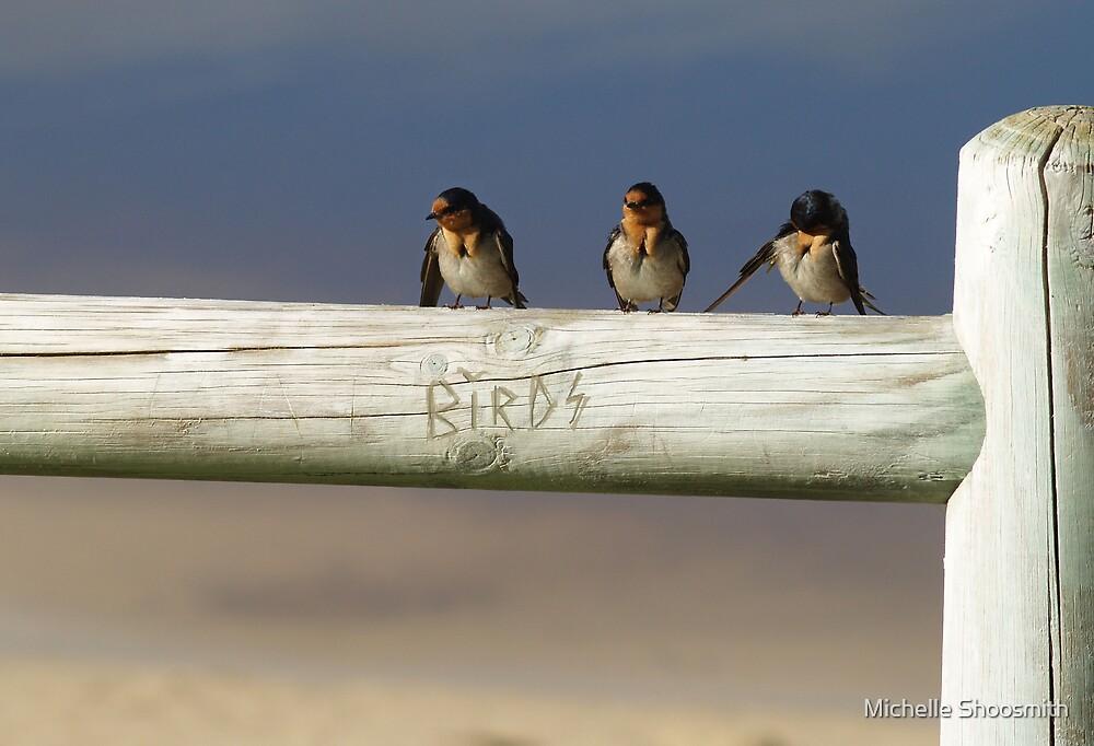 Revenge Of The Birds by Michelle Shoosmith