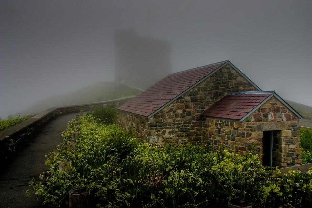 Enshrouded in Fog by Kevin  Kroeker