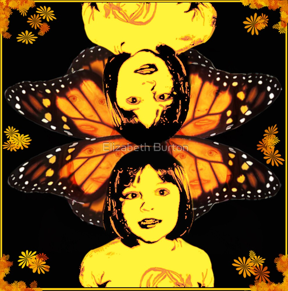 Dreaming Of Butterflies by Elizabeth Burton