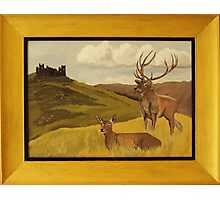 """""""Derbyshire View"""" ART FRAUD EXPOSED! Photographic Print"""