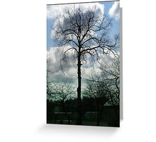 The fate landscape trees Greeting Card