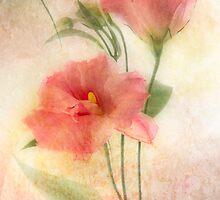 Frozen Beauty by Ann Garrett